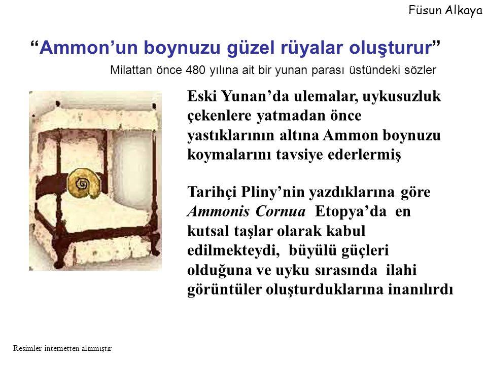 Tarihçi Pliny'nin yazdıklarına göre Ammonis Cornua Etopya'da en kutsal taşlar olarak kabul edilmekteydi, büyülü güçleri olduğuna ve uyku sırasında ila