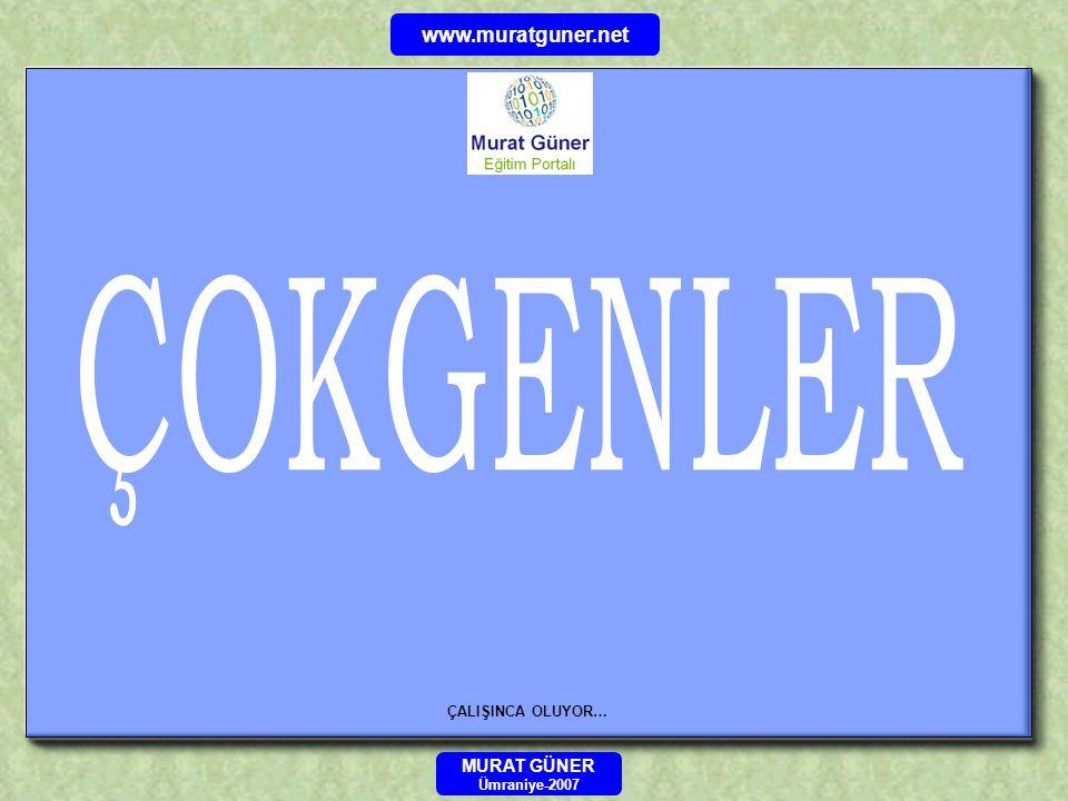 ÇALIŞINCA OLUYOR… MURAT GÜNER Ümraniye-2007 www.muratguner.net