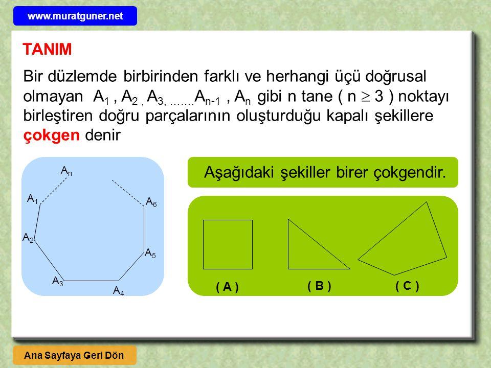 AnAn A1A1 A2A2 A3A3 A4A4 A5A5 A6A6 Bir düzlemde birbirinden farklı ve herhangi üçü doğrusal olmayan A 1, A 2, A 3, ……. A n-1, A n gibi n tane ( n  3
