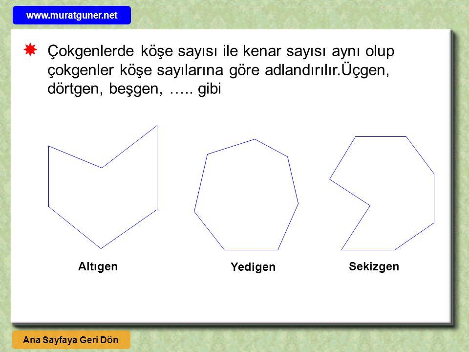 Çokgenlerde köşe sayısı ile kenar sayısı aynı olup çokgenler köşe sayılarına göre adlandırılır.Üçgen, dörtgen, beşgen, ….. gibi  SekizgenAltıgen Yedi