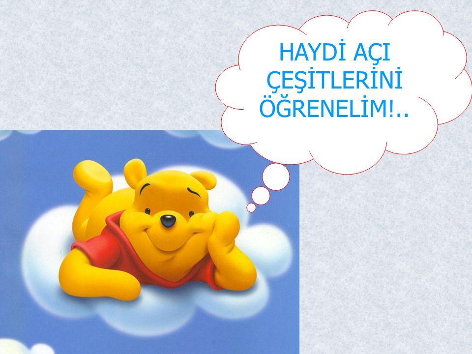 HAYDİ AÇI ÇEŞİTLERİNİ ÖĞRENELİM!..