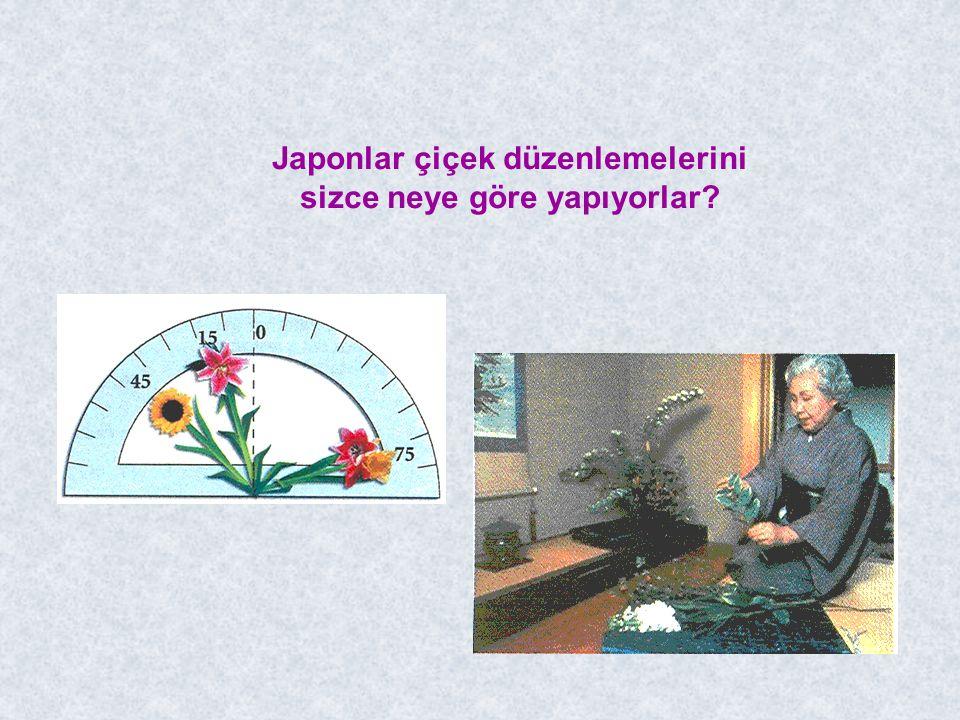 Japonlar çiçek düzenlemelerini sizce neye göre yapıyorlar?