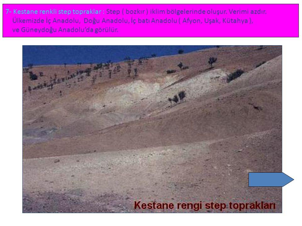 7- Kestane renkli step topraklar : Step ( bozkır ) iklim bölgelerinde oluşur. Verimi azdır. Ülkemizde İç Anadolu, Doğu Anadolu, İç batı Anadolu ( Afyo