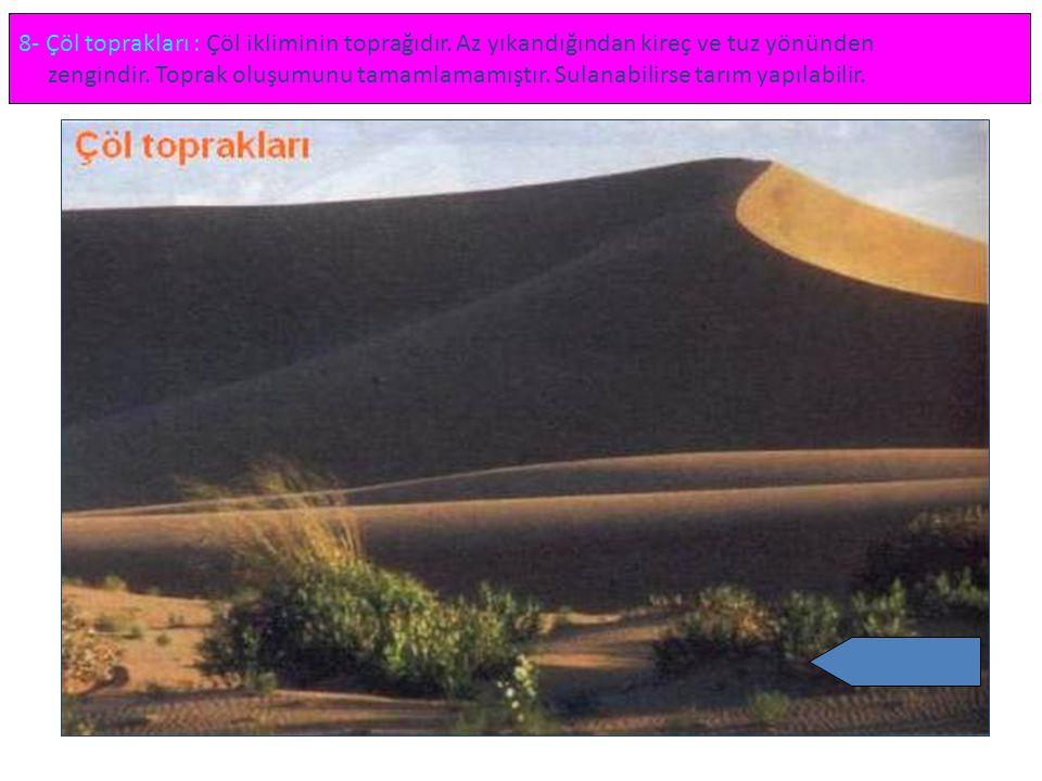 8- Çöl toprakları : Çöl ikliminin toprağıdır. Az yıkandığından kireç ve tuz yönünden zengindir. Toprak oluşumunu tamamlamamıştır. Sulanabilirse tarım