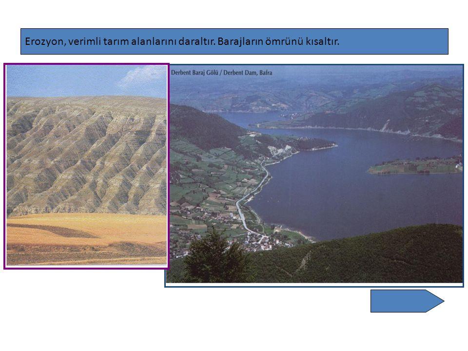 Erozyon, verimli tarım alanlarını daraltır. Barajların ömrünü kısaltır.