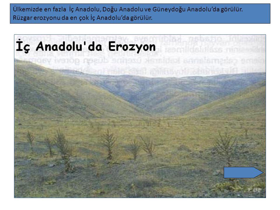 Ülkemizde en fazla İç Anadolu, Doğu Anadolu ve Güneydoğu Anadolu'da görülür. Rüzgar erozyonu da en çok İç Anadolu'da görülür.