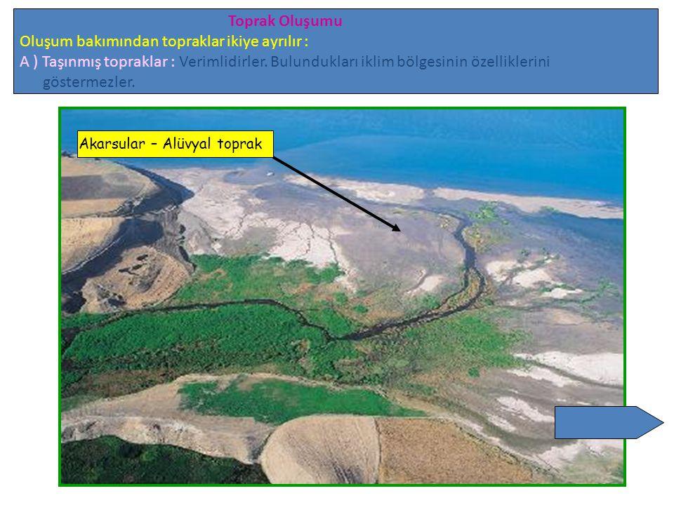 Toprak Oluşumu Oluşum bakımından topraklar ikiye ayrılır : A ) Taşınmış topraklar : Verimlidirler. Bulundukları iklim bölgesinin özelliklerini gösterm