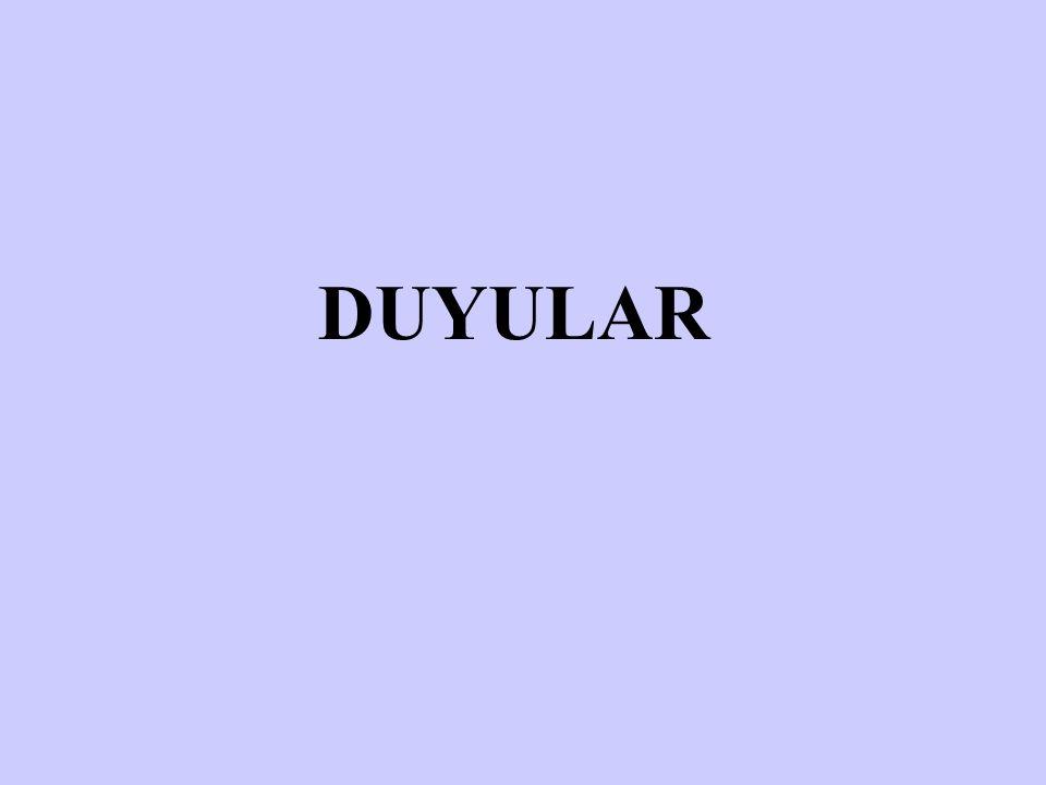 DUYULAR