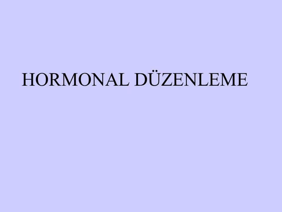 HORMONAL DÜZENLEME