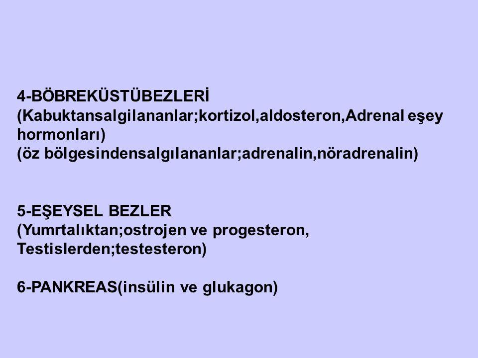 4-BÖBREKÜSTÜBEZLERİ (Kabuktansalgilananlar;kortizol,aldosteron,Adrenal eşey hormonları) (öz bölgesindensalgılananlar;adrenalin,nöradrenalin) 5-EŞEYSEL