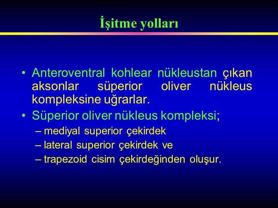 Anteroventral kohlear nükleustan çıkan aksonlar süperior oliver nükleus kompleksine uğrarlar. Süperior oliver nükleus kompleksi; –mediyal superior çek