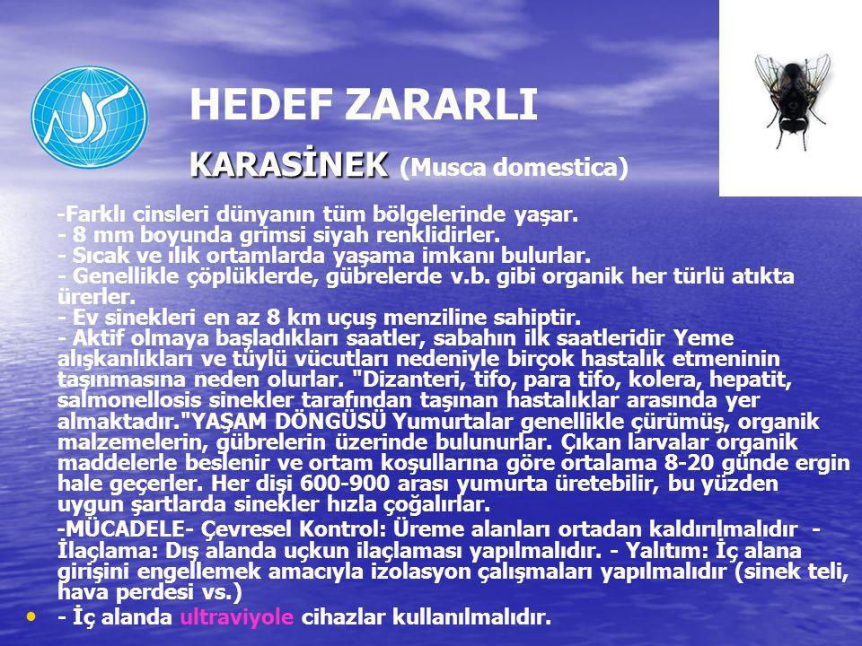 KARASİNEK HEDEF ZARARLI KARASİNEK (Musca domestica) -Farklı cinsleri dünyanın tüm bölgelerinde yaşar.