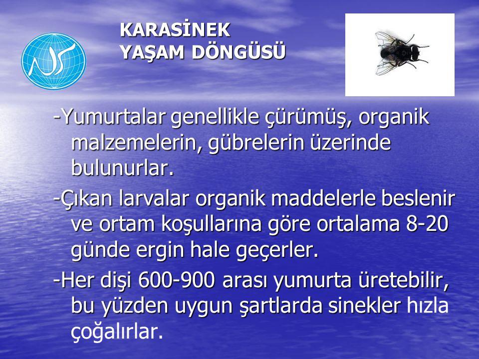 -Yumurtalar genellikle çürümüş, organik malzemelerin, gübrelerin üzerinde bulunurlar. -Çıkan larvalar organik maddelerle beslenir ve ortam koşullarına