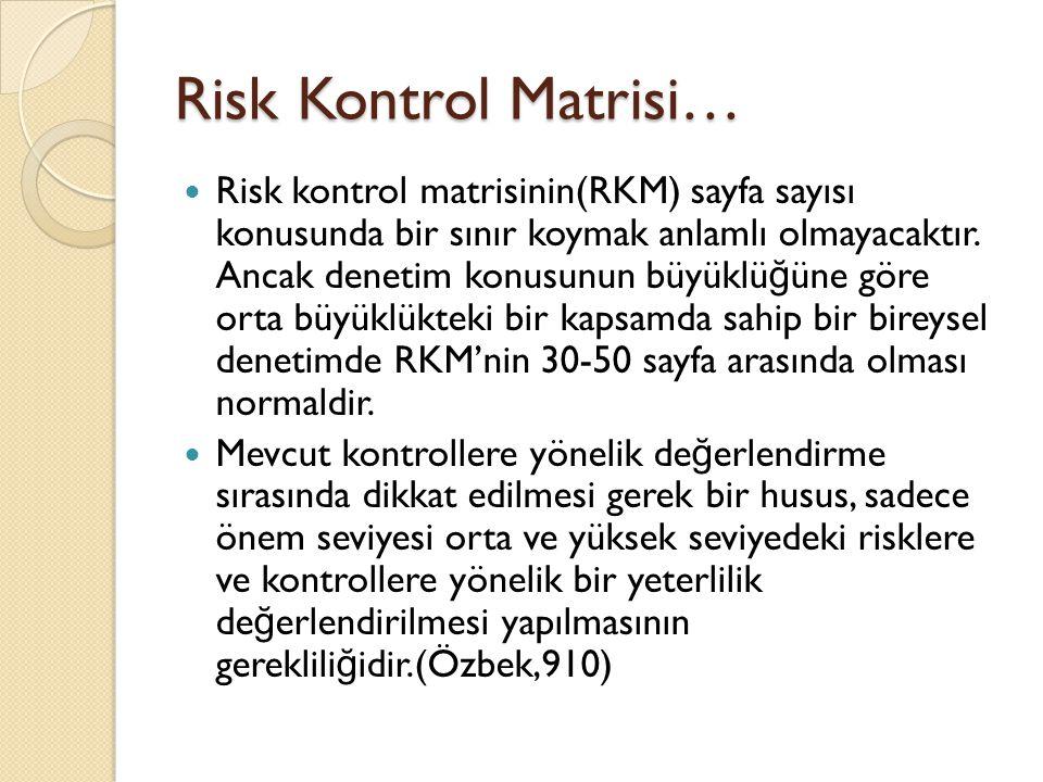 Risk Kontrol Matrisi… Risk kontrol matrisinin(RKM) sayfa sayısı konusunda bir sınır koymak anlamlı olmayacaktır.