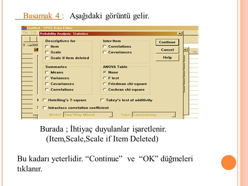 """Basamak 4 : Aşağıdaki görüntü gelir. Burada ; İhtiyaç duyulanlar işaretlenir. (Item,Scale,Scale if Item Deleted) Bu kadarı yeterlidir. """"Continue"""" ve """""""