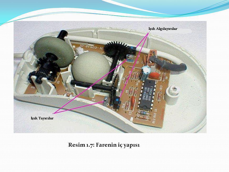 Resim 1.7: Farenin iç yapıs1