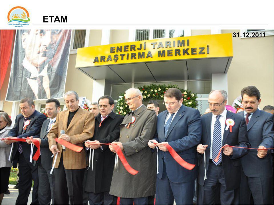 10 31.12.2011 ETAM