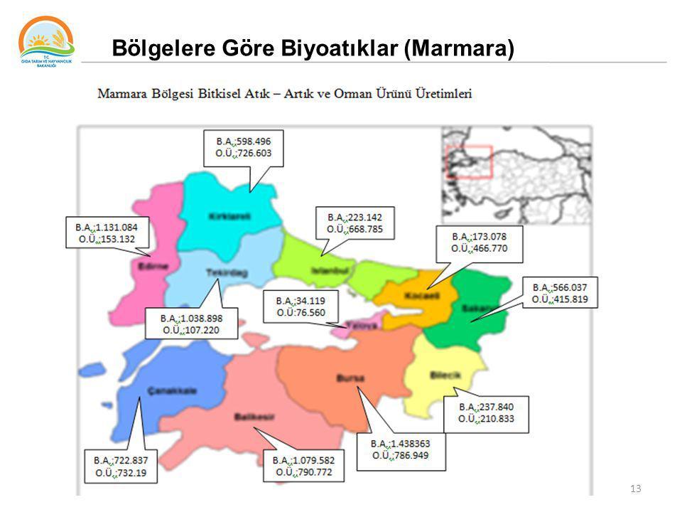 13 Bölgelere Göre Biyoatıklar (Marmara)