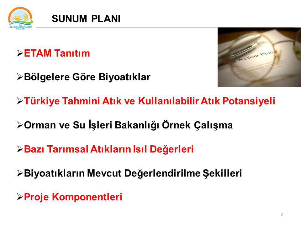 2 SUNUM PLANI  ETAM Tanıtım  Bölgelere Göre Biyoatıklar  Türkiye Tahmini Atık ve Kullanılabilir Atık Potansiyeli  Orman ve Su İşleri Bakanlığı Örnek Çalışma  Bazı Tarımsal Atıkların Isıl Değerleri  Biyoatıkların Mevcut Değerlendirilme Şekilleri  Proje Komponentleri