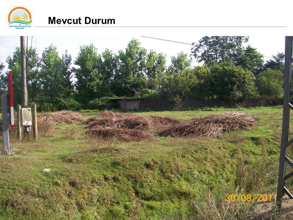 33 Mevcut Durum