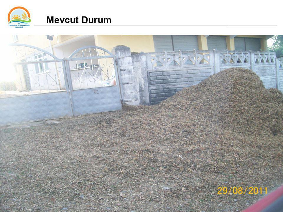 34 Mevcut Durum