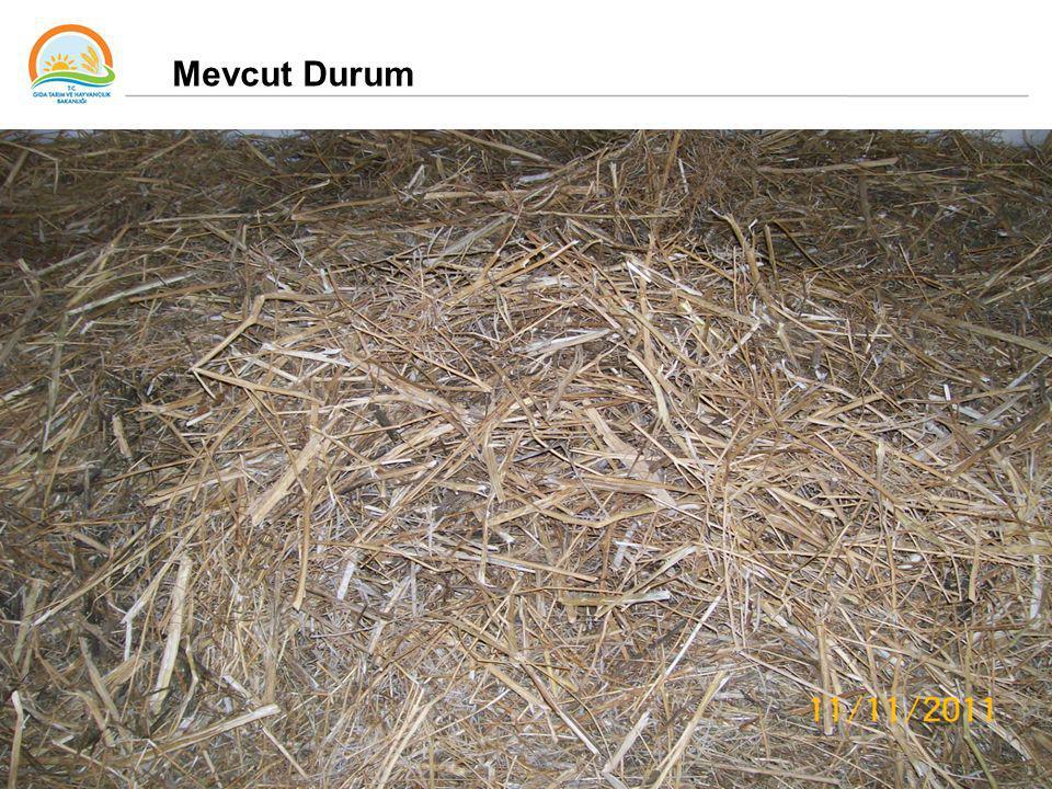 35 Mevcut Durum