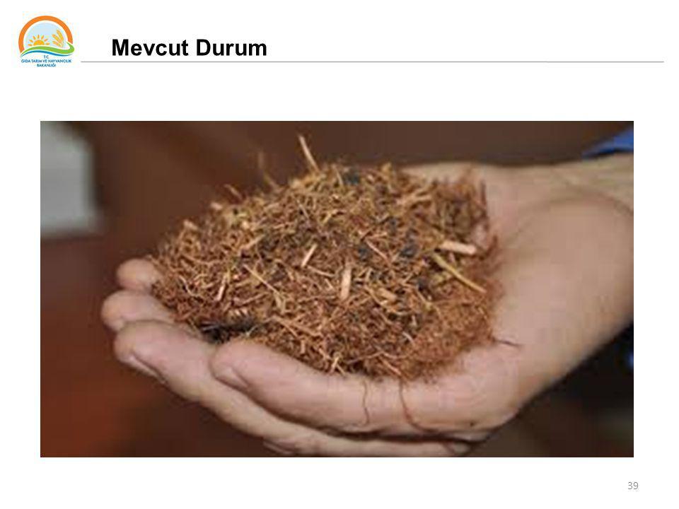39 Mevcut Durum