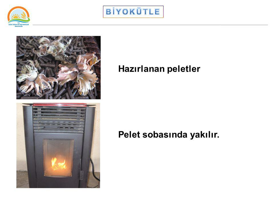 Hazırlanan peletler Pelet sobasında yakılır.