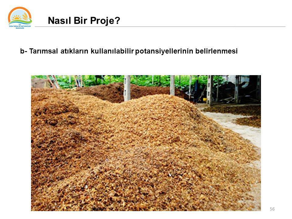 56 Nasıl Bir Proje? b- Tarımsal atıkların kullanılabilir potansiyellerinin belirlenmesi
