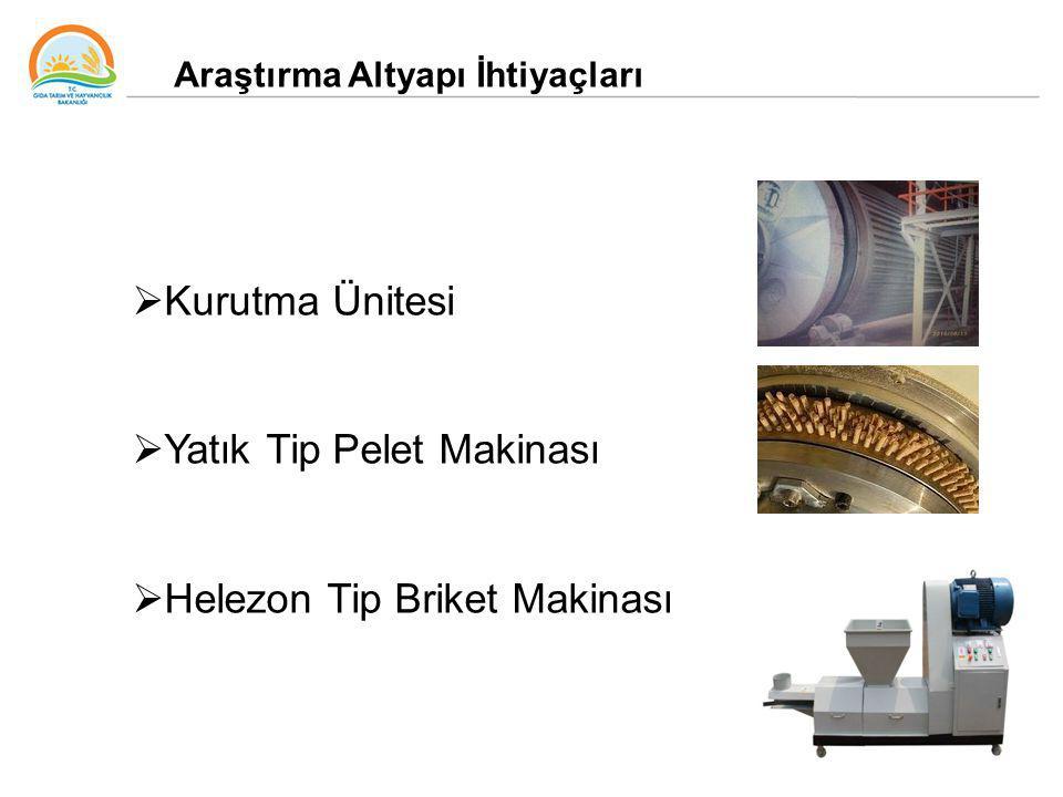 62 Araştırma Altyapı İhtiyaçları  Kurutma Ünitesi  Yatık Tip Pelet Makinası  Helezon Tip Briket Makinası