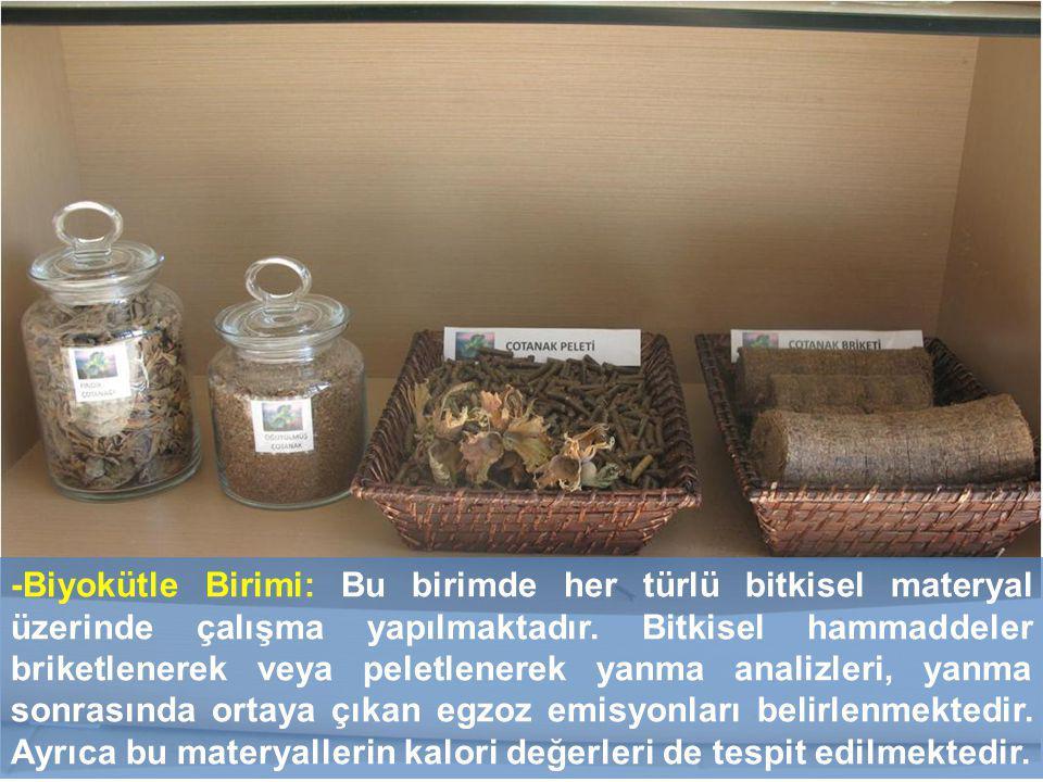 -Biyokütle Birimi: Bu birimde her türlü bitkisel materyal üzerinde çalışma yapılmaktadır.