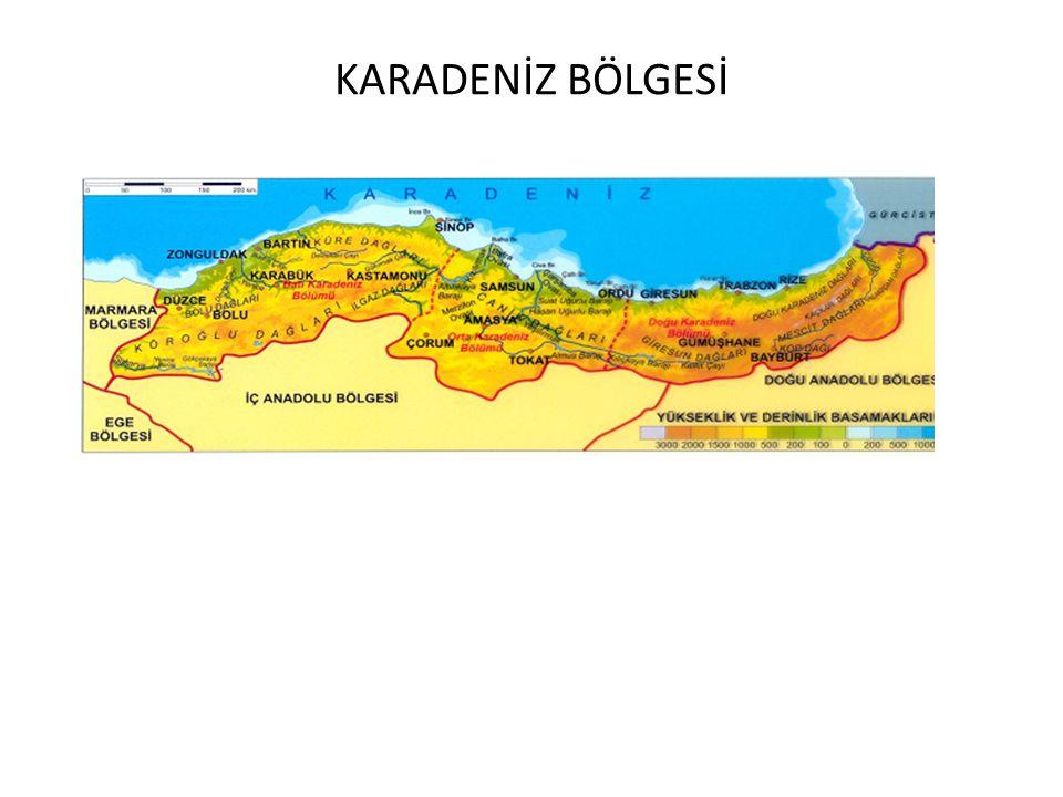 2008 ÖSS: İstanbul ve Çanakkale boğazlarının aşağıdaki özelliklerinden hangisi diğer dördünün nedeni olarak gösterilebilir.