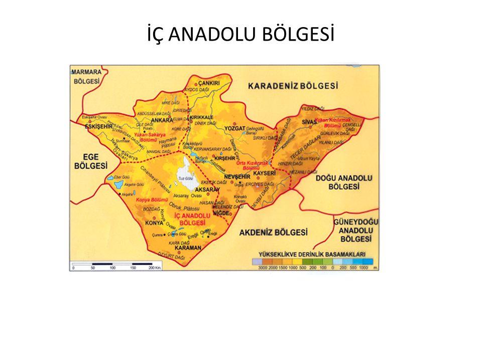 2008 ÖSS: Tarım ve hayvancılık etkinlikleri göz önüne alındığında, Türkiye'de, I.