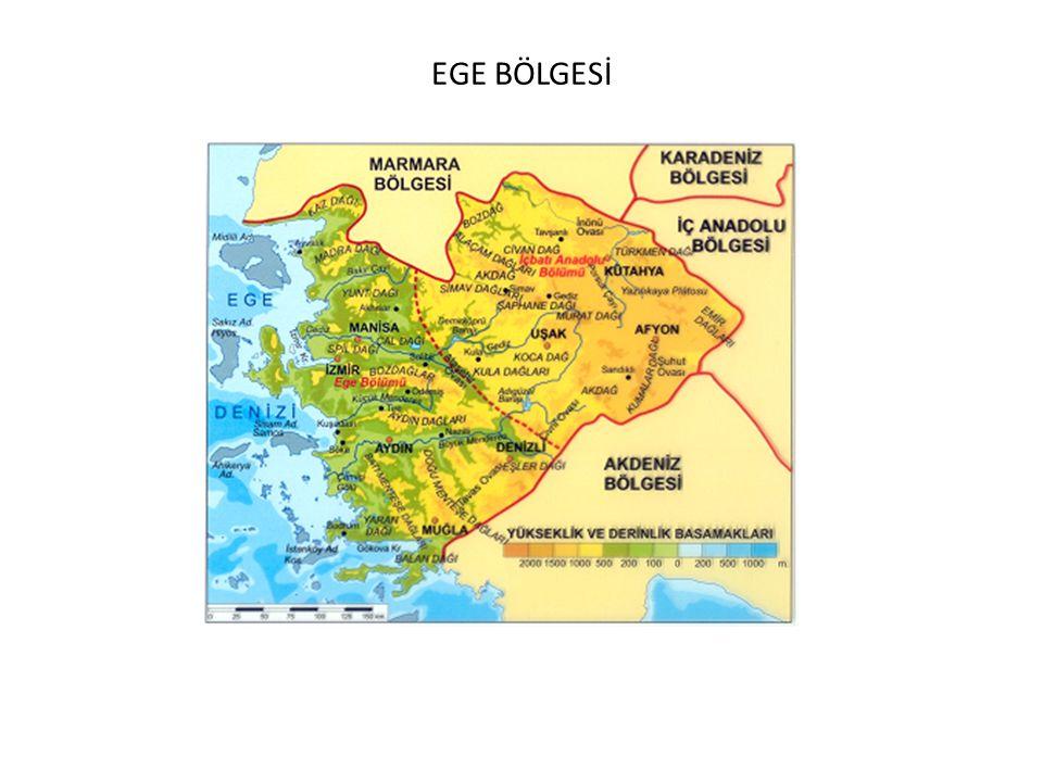 2009 ÖSS:Yeryüzünde doğal, beşerî ve ekonomik yönden birbirine benzer ya da farklı yerlerin olması çeşitli özelliklere göre bölgelerin oluşturulabilmesini sağlamıştır.