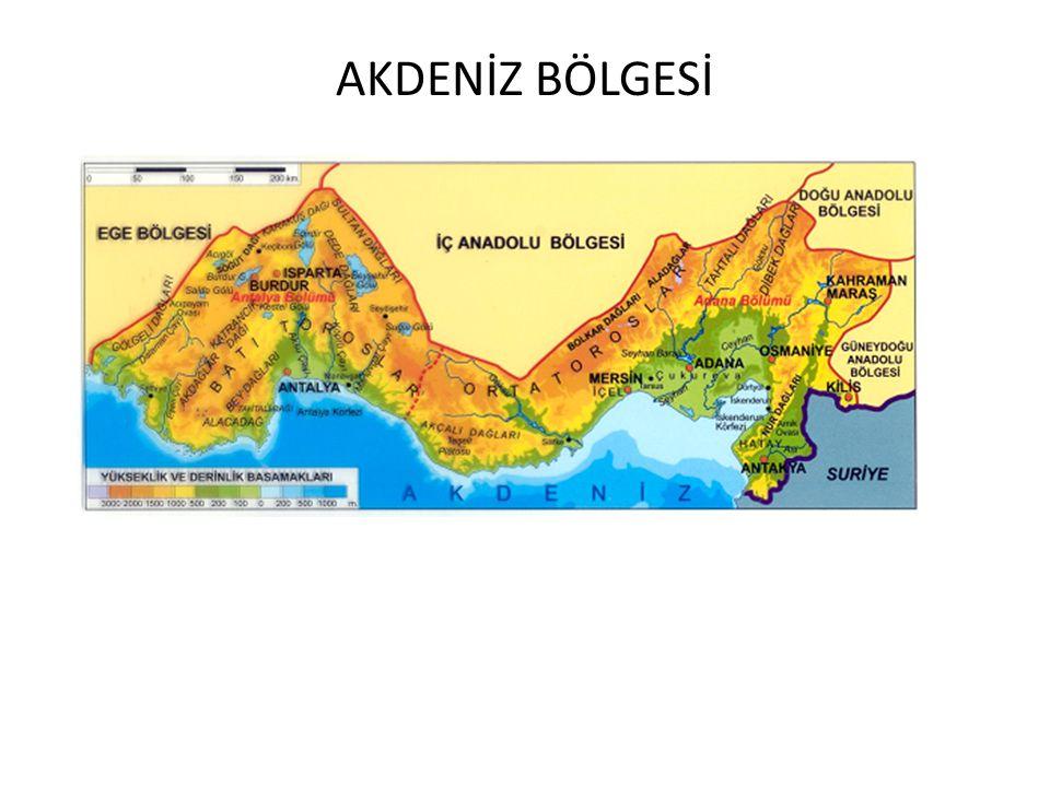 Halı ve Kilimcilik:Sivas, Gaziantep, Isparta, Gördes, Kayseri'de gelişmiştir.