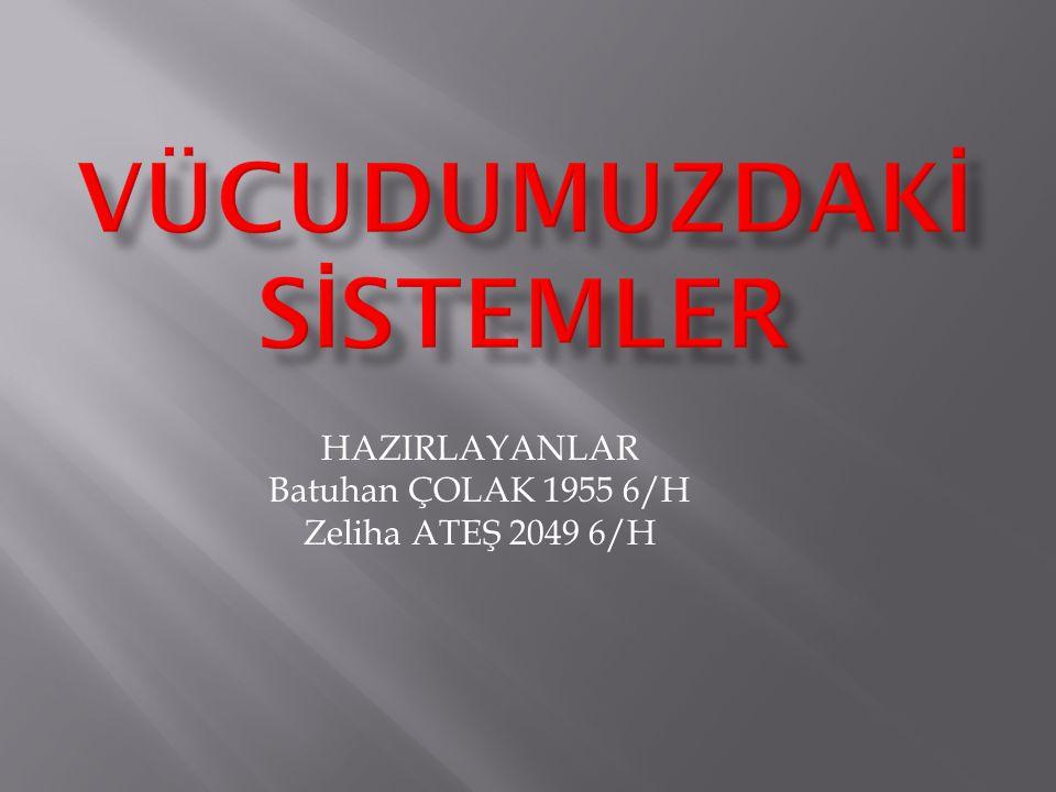 HAZIRLAYANLAR Batuhan ÇOLAK 1955 6/H Zeliha ATEŞ 2049 6/H