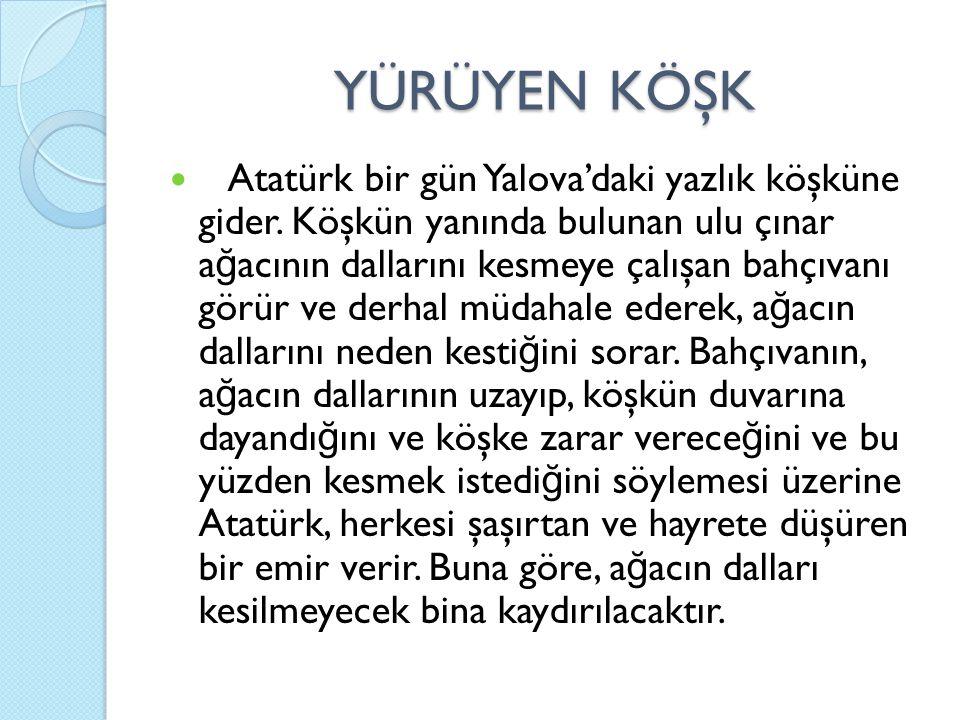 YÜRÜYEN KÖŞK Atatürk bir gün Yalova'daki yazlık köşküne gider. Köşkün yanında bulunan ulu çınar a ğ acının dallarını kesmeye çalışan bahçıvanı görür v