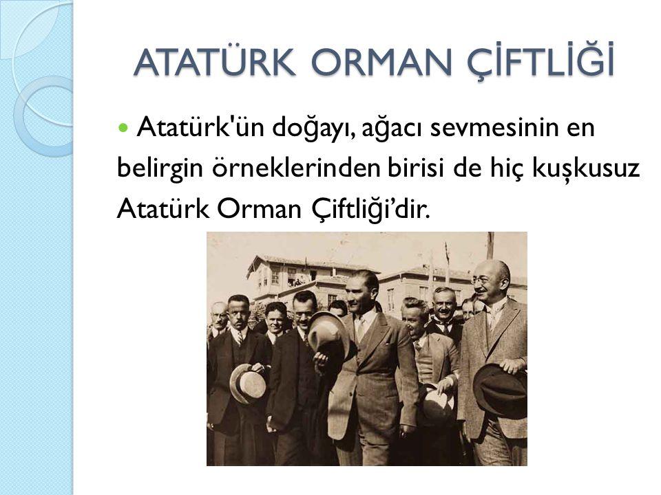 ATATÜRK ORMAN Ç İ FTL İĞİ Atatürk ün do ğ ayı, a ğ acı sevmesinin en belirgin örneklerinden birisi de hiç kuşkusuz Atatürk Orman Çiftli ğ i'dir.