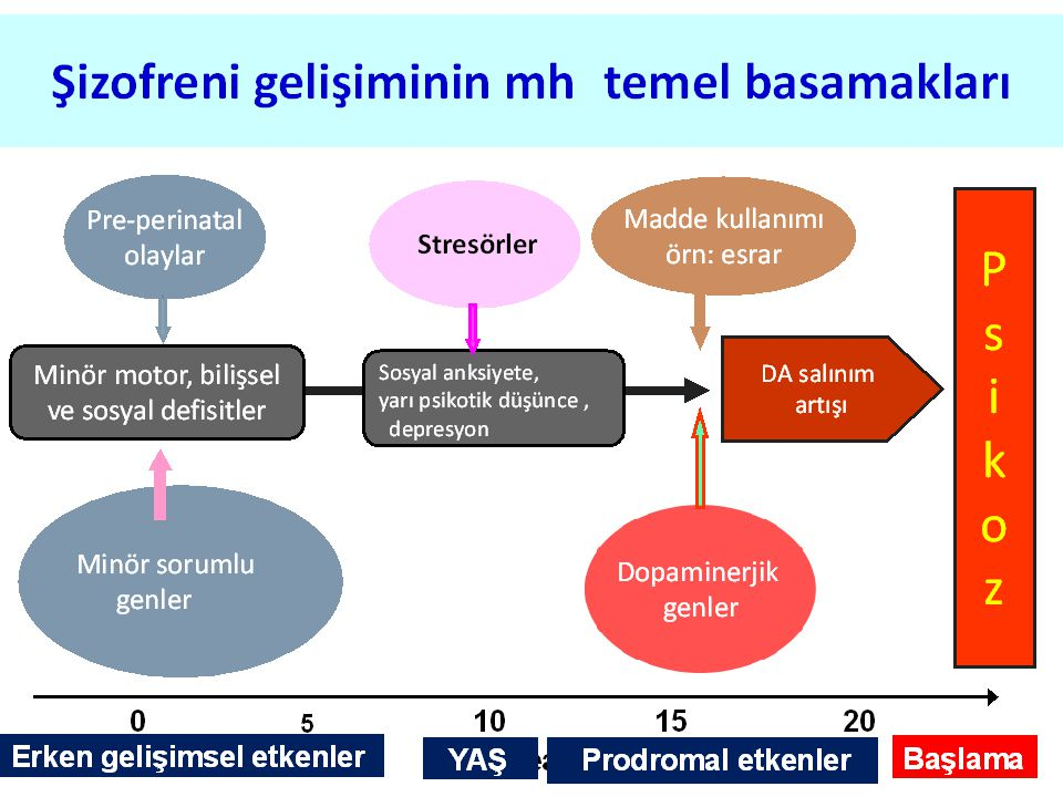 Kaynaklar 1.Prof. Dr.