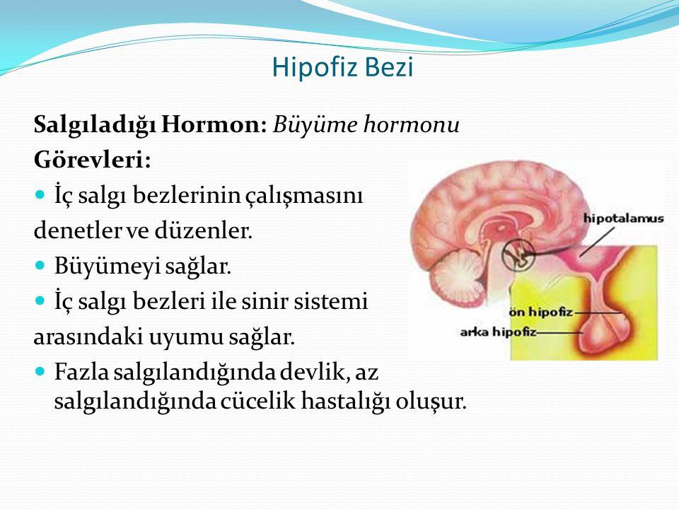 Hipofiz Bezi Salgıladığı Hormon: Büyüme hormonu Görevleri: İç salgı bezlerinin çalışmasını denetler ve düzenler. Büyümeyi sağlar. İç salgı bezleri ile