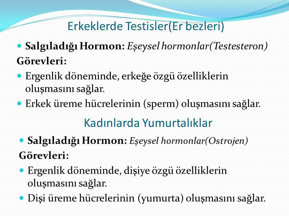 Erkeklerde Testisler(Er bezleri) Salgıladığı Hormon: Eşeysel hormonlar(Testesteron) Görevleri: Ergenlik döneminde, erkeğe özgü özelliklerin oluşmasını