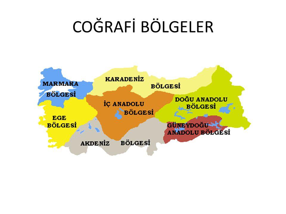 COĞRAFİ BÖLGELER
