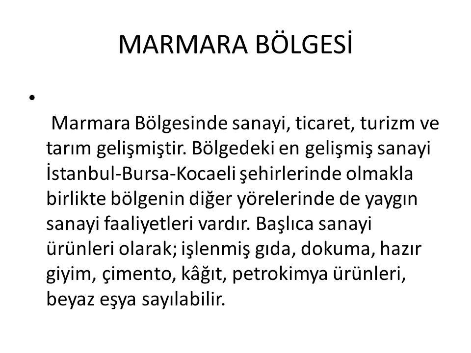 MARMARA BÖLGESİ Marmara Bölgesinde sanayi, ticaret, turizm ve tarım gelişmiştir. Bölgedeki en gelişmiş sanayi İstanbul-Bursa-Kocaeli şehirlerinde olma