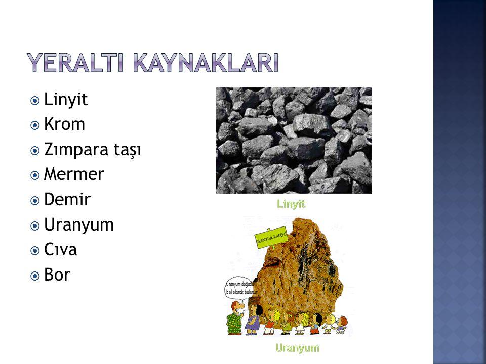  Linyit  Krom  Zımpara taşı  Mermer  Demir  Uranyum  Cıva  Bor