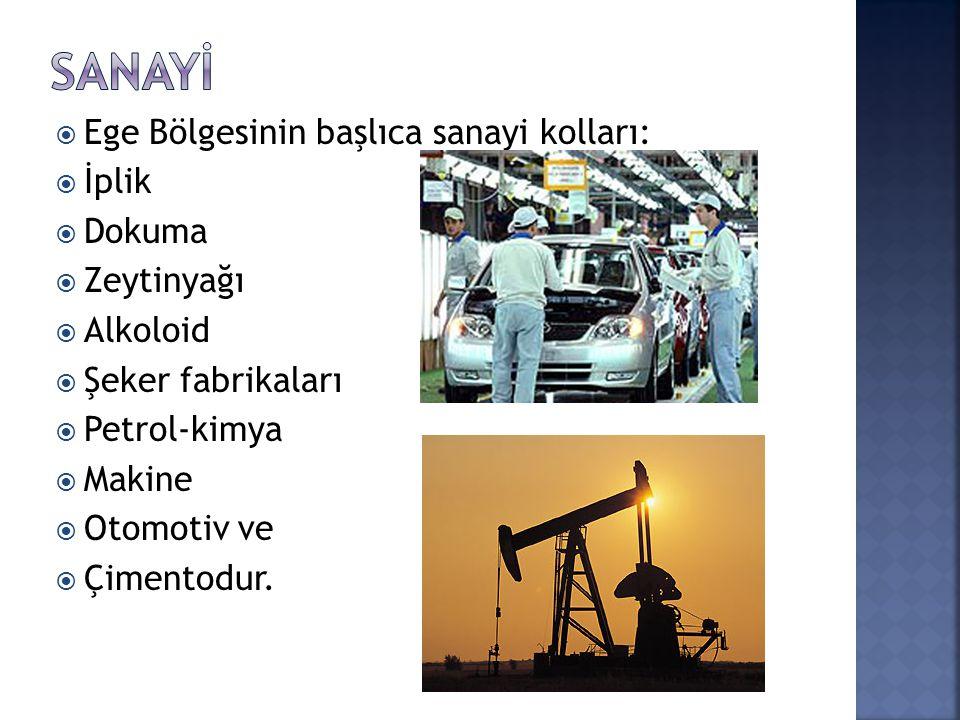  Ege Bölgesinin başlıca sanayi kolları:  İplik  Dokuma  Zeytinyağı  Alkoloid  Şeker fabrikaları  Petrol-kimya  Makine  Otomotiv ve  Çimentodur.