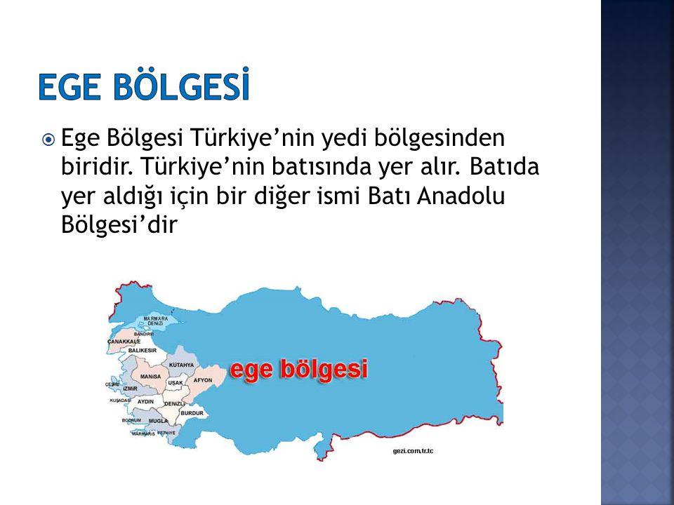  Kıyı kesiminde Akdeniz İklimi,  İç Batı Anadolu Bölümünde ise karasal iklim görülür.