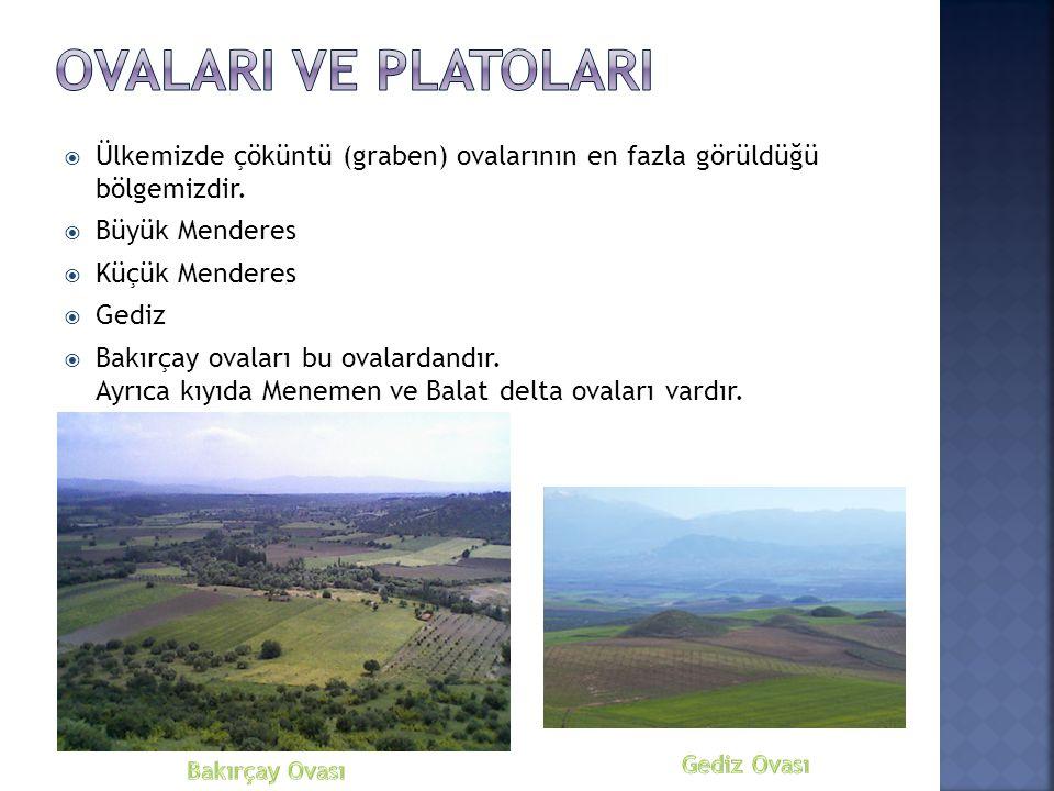  Ülkemizde çöküntü (graben) ovalarının en fazla görüldüğü bölgemizdir.