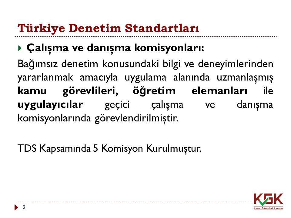 Türkiye Denetim Standartları  Çalışma ve danışma komisyonları: Ba ğ ımsız denetim konusundaki bilgi ve deneyimlerinden yararlanmak amacıyla uygulama