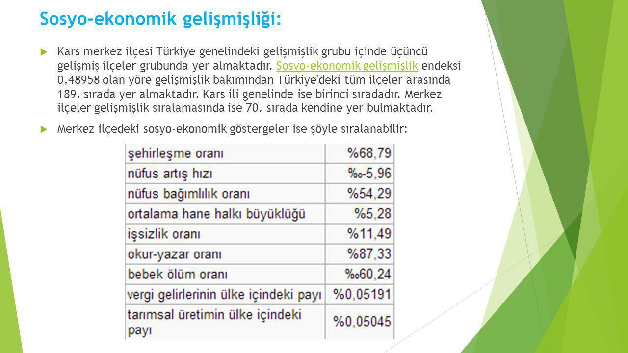 Sosyo-ekonomik gelişmişliği:  Kars merkez ilçesi Türkiye genelindeki gelişmişlik grubu içinde üçüncü gelişmiş ilçeler grubunda yer almaktadır. Sosyo-
