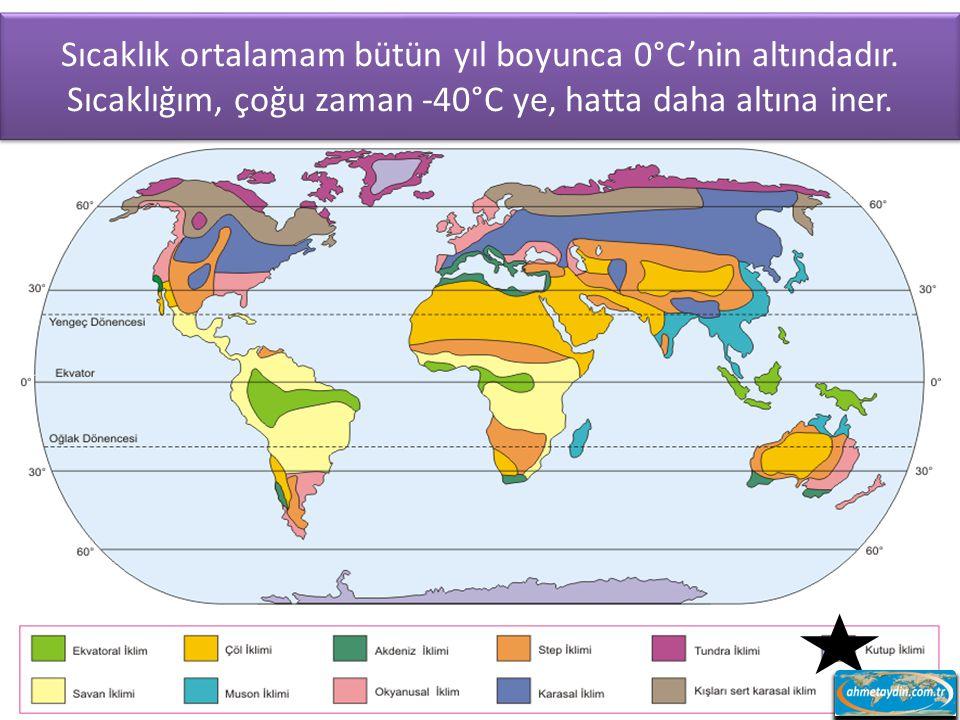 Dönenceler civarında, Asya ve Kuzey Amerika'da karaların iç kısımlarında ve Güney Amerika'nın güneyinde görülürüm.